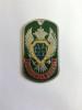 Жетон (нерж. ст., эмал.) Пограничная служба (зел. фон)